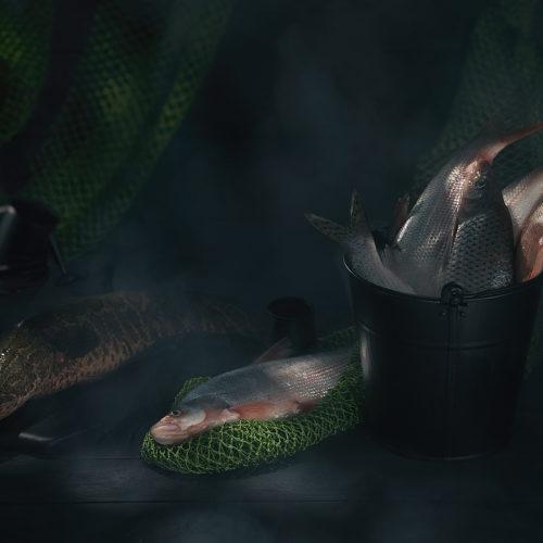 Rusctic food proj. | Fish