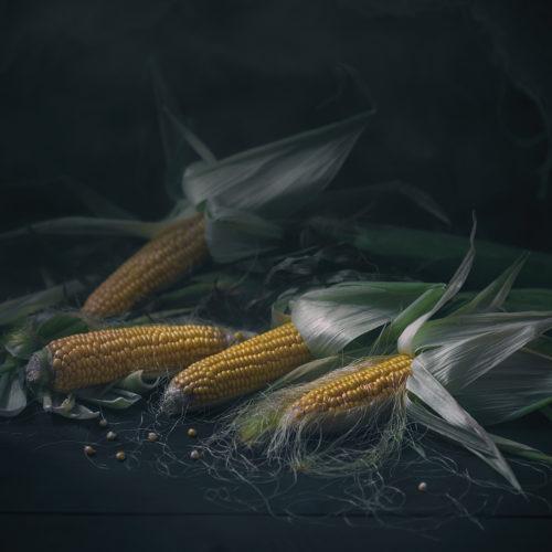 Rusctic food proj. | Corn